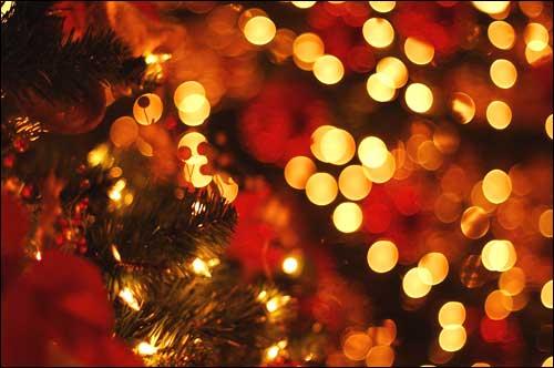 Формула 1 празднует Рождество